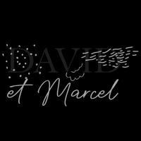 David et Marcel Les Indés